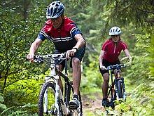 Radfahren und Mountainbiken im Wald